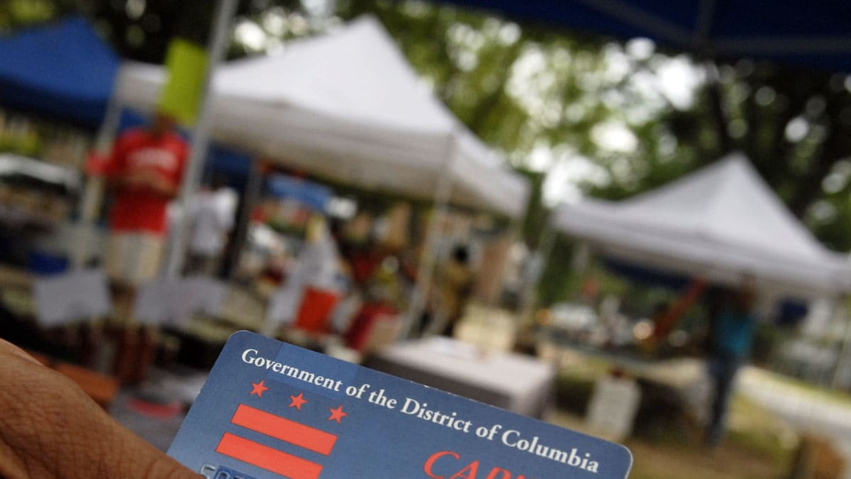 Scroll Down To Read : How To Apply For Food Stamps Wa By Andre Aciman