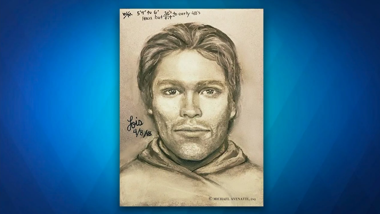 Stormy Daniels' Lawyer Reveals Sketch of Man Who Allegedly Threatened Her