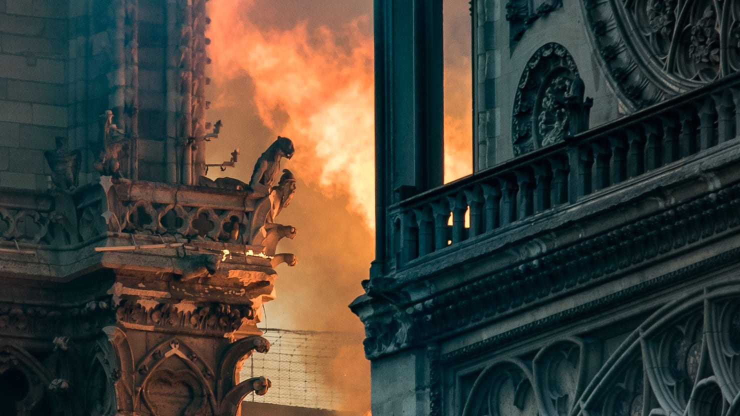 No Word on Fate of Notre Dame's 18,000 Bees