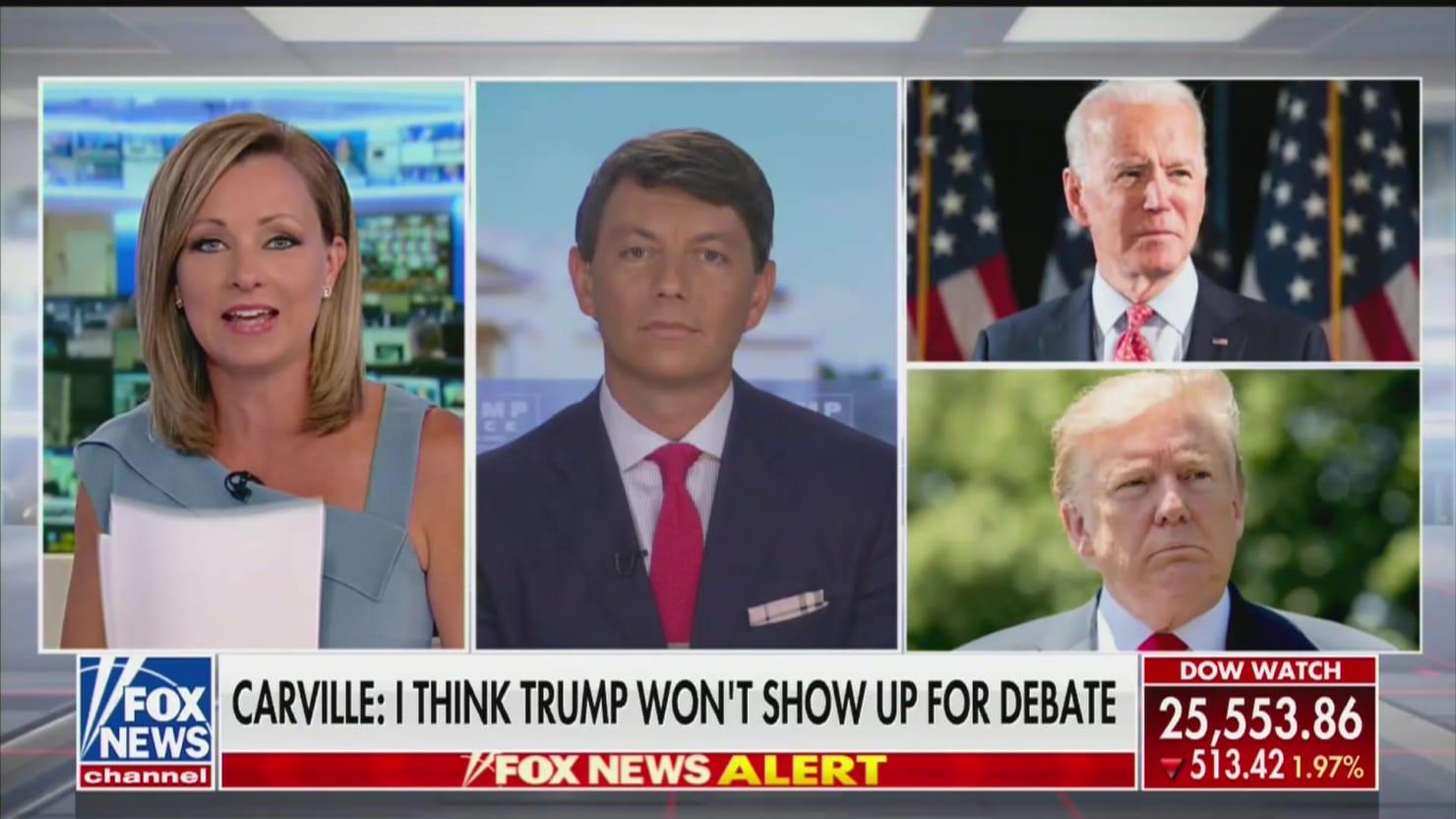 Fox News Anchor Sandra Smith Forced to Quickly Pivot When Trump Spox Goes on Bizarro Biden Rant