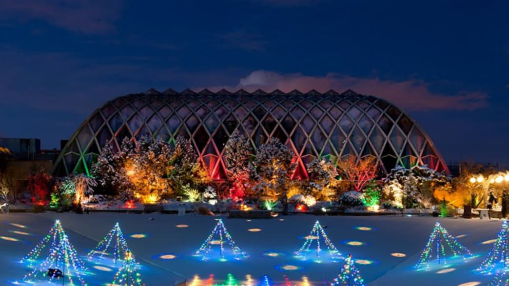 This Is Why You Should Visit Botanical Gardens in the Winter (Photos)