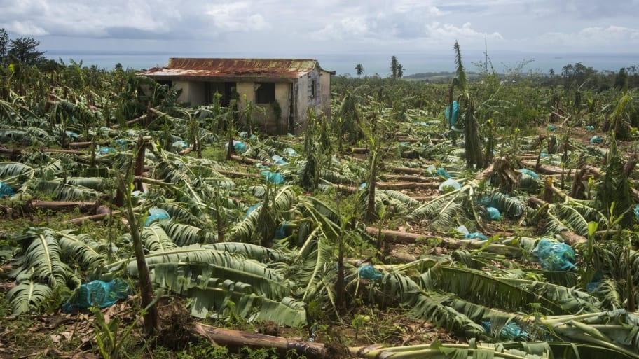 Study Links Hurricane Maria's Extreme Rainfall to Climate Change