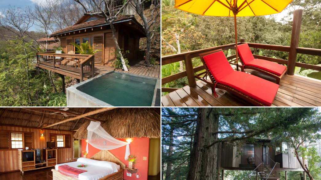 Sleep Like a Monkey: Nine Highflying Tree House Hotels (Photos)