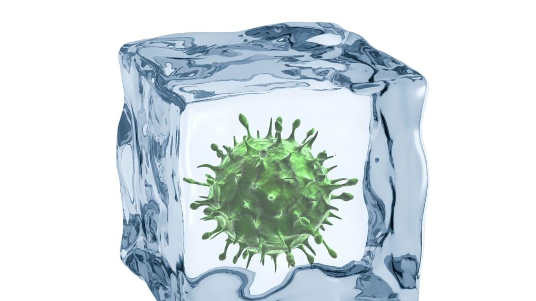 Giant Viruses Are Hiding in Permafrost, But Not for Long