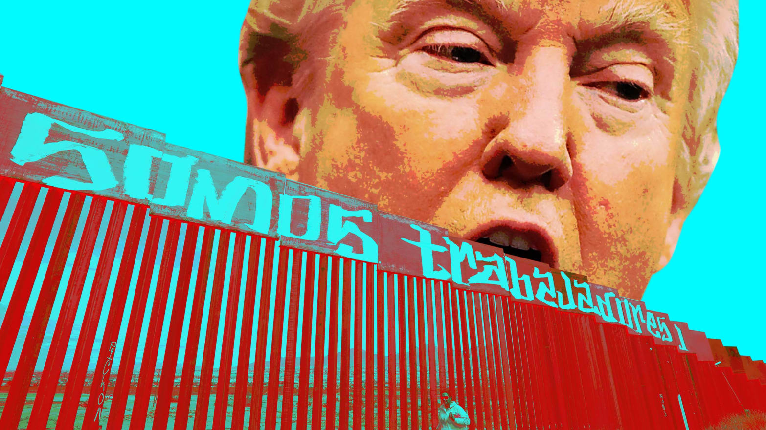 Trump vs  the Cartels: Whose Team is He On?