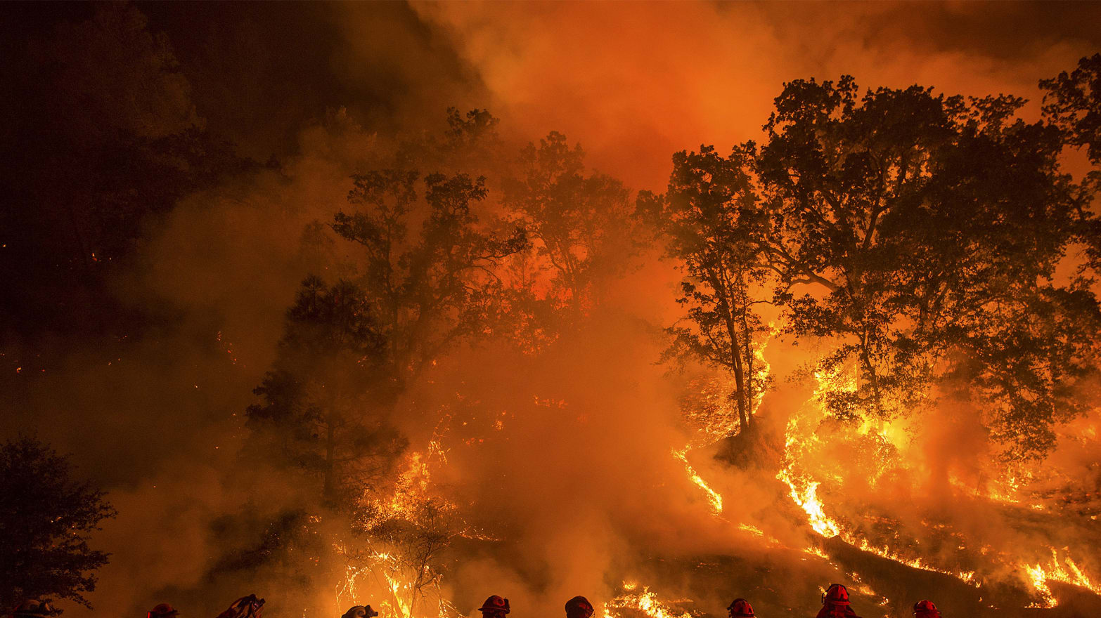 Prisoners Conned Into Fighting Wildfires