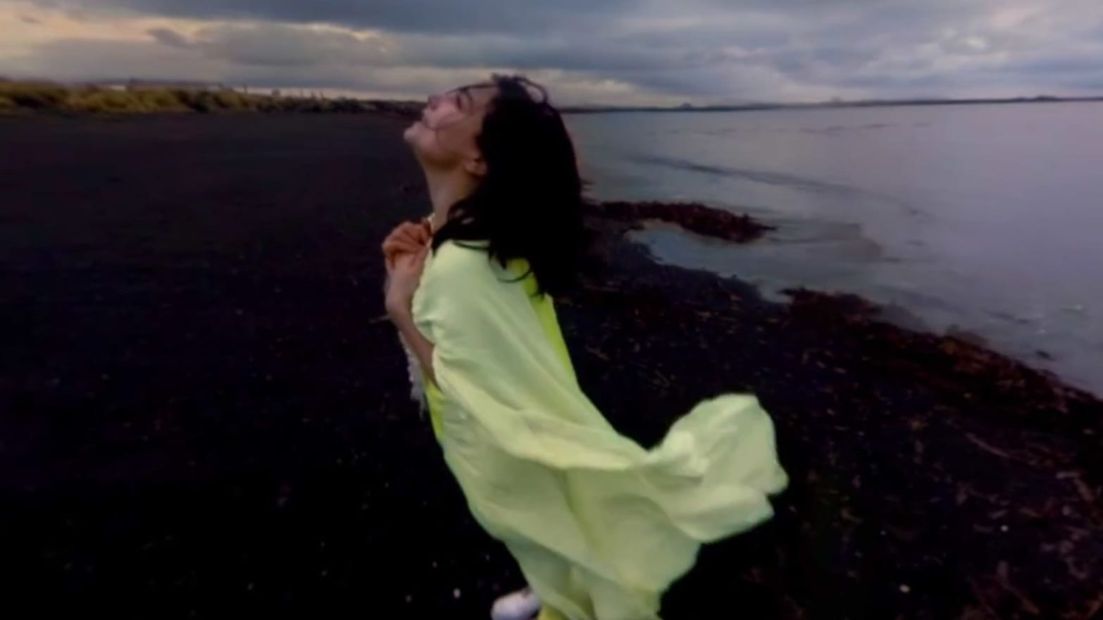 Bjork's Head-Spinning 360-Degree Music Video