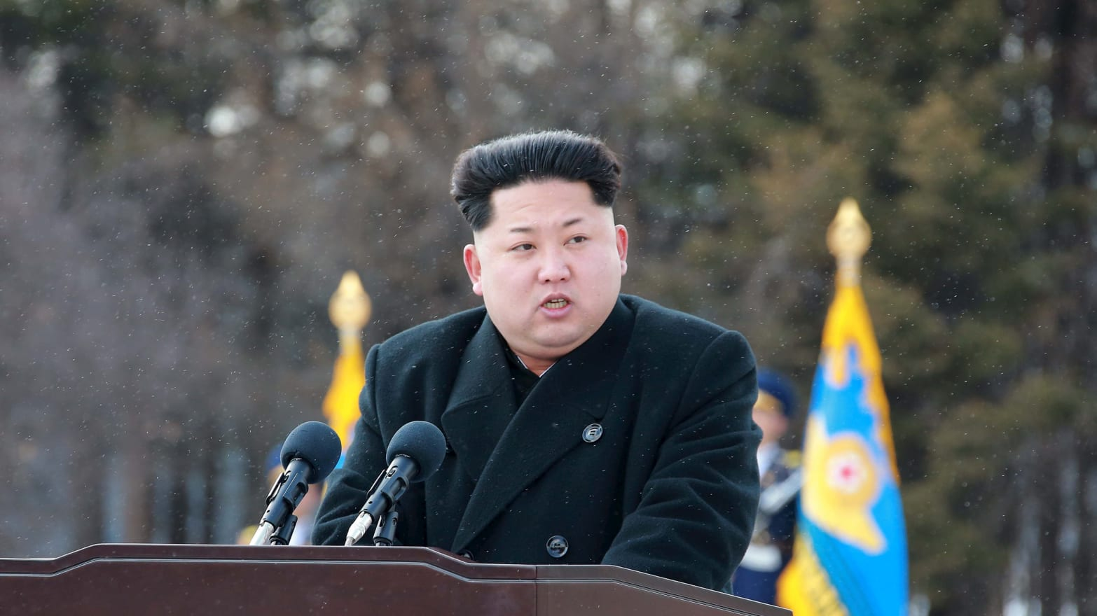 Kim Jong Un's Cruel & Unusual Executions