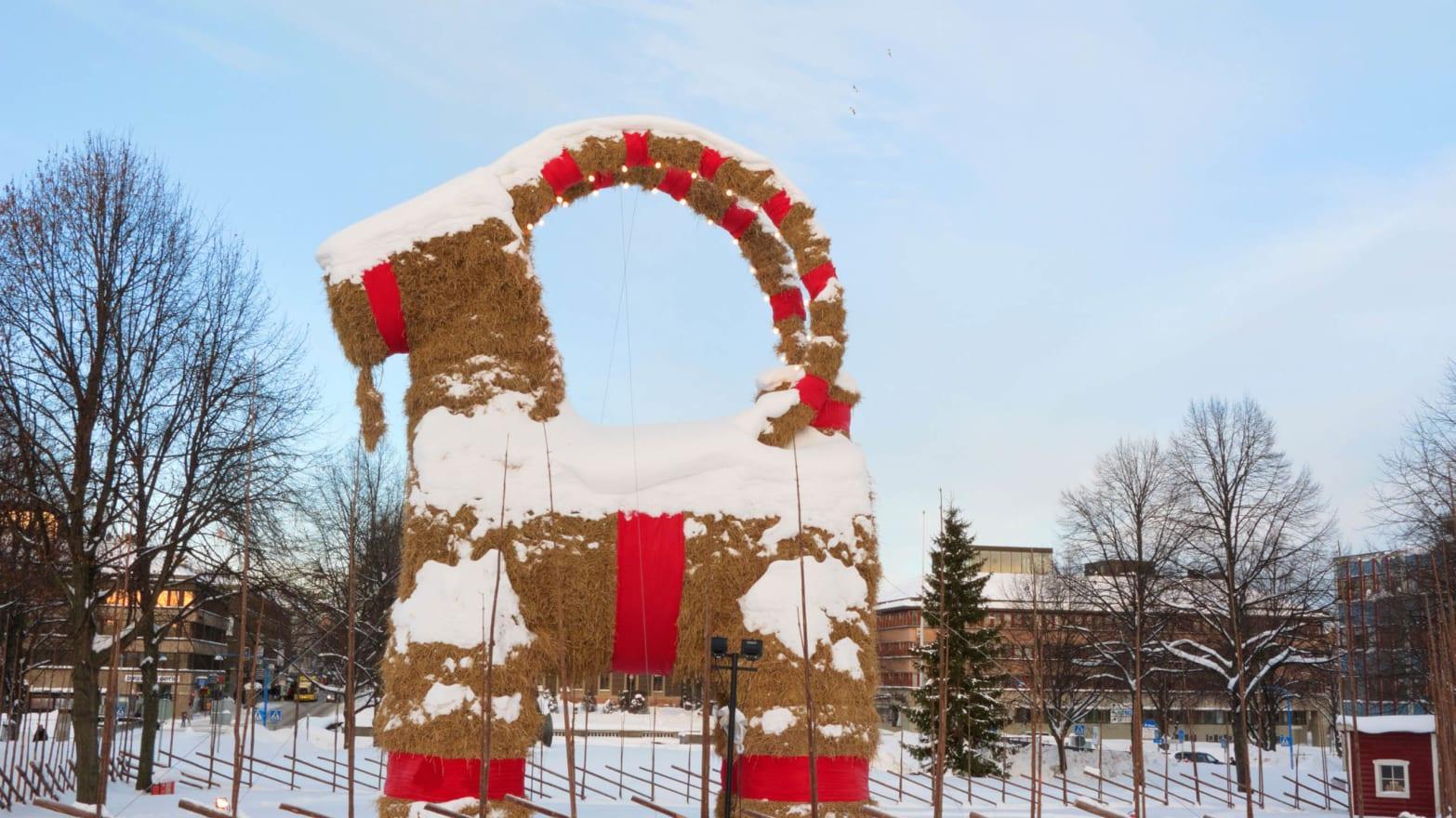 Christmas Goat.Sweden S Burning Christmas Goat