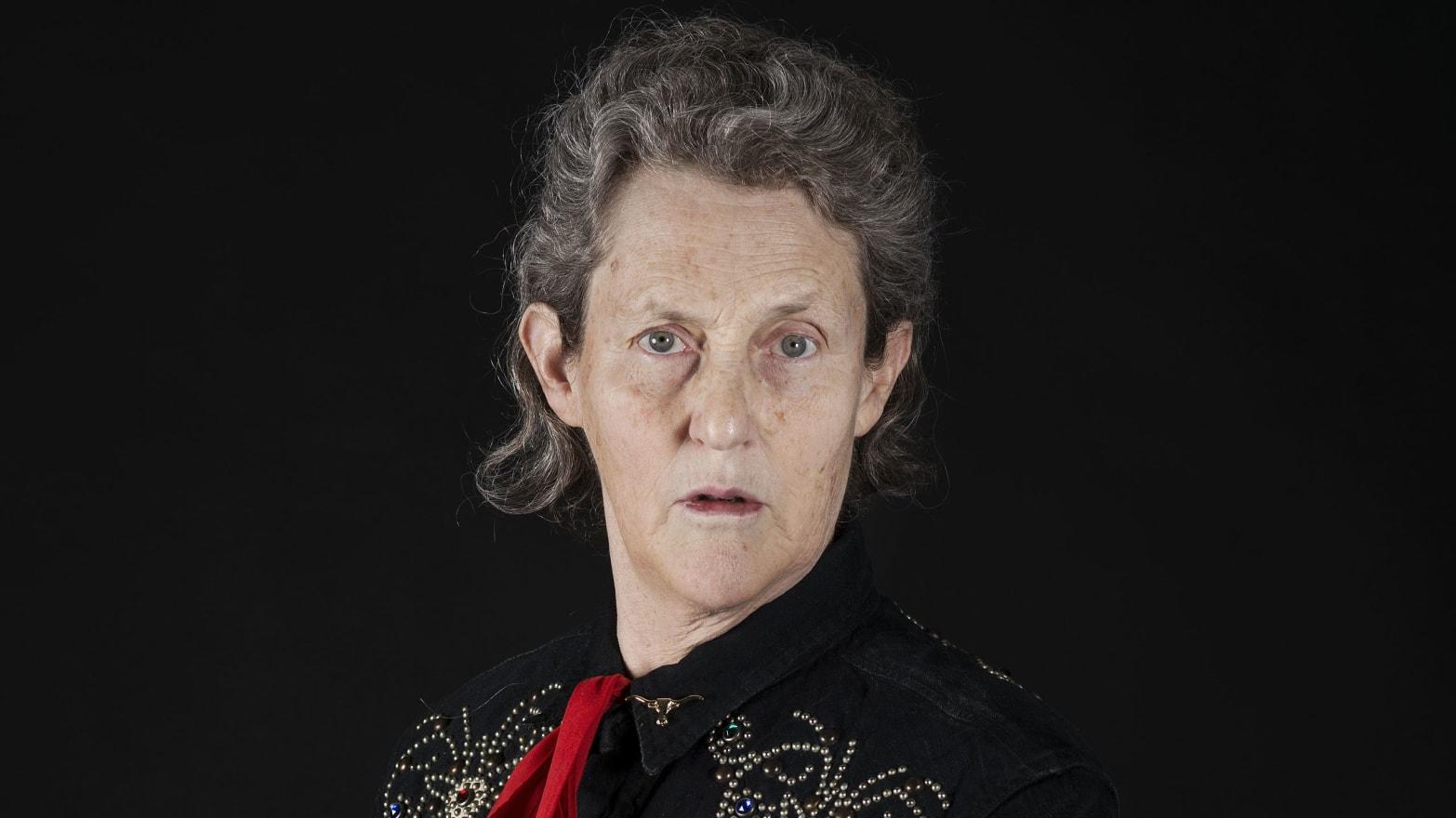 The Most Inspiring Bits Of Temple Grandin S Reddit Ama