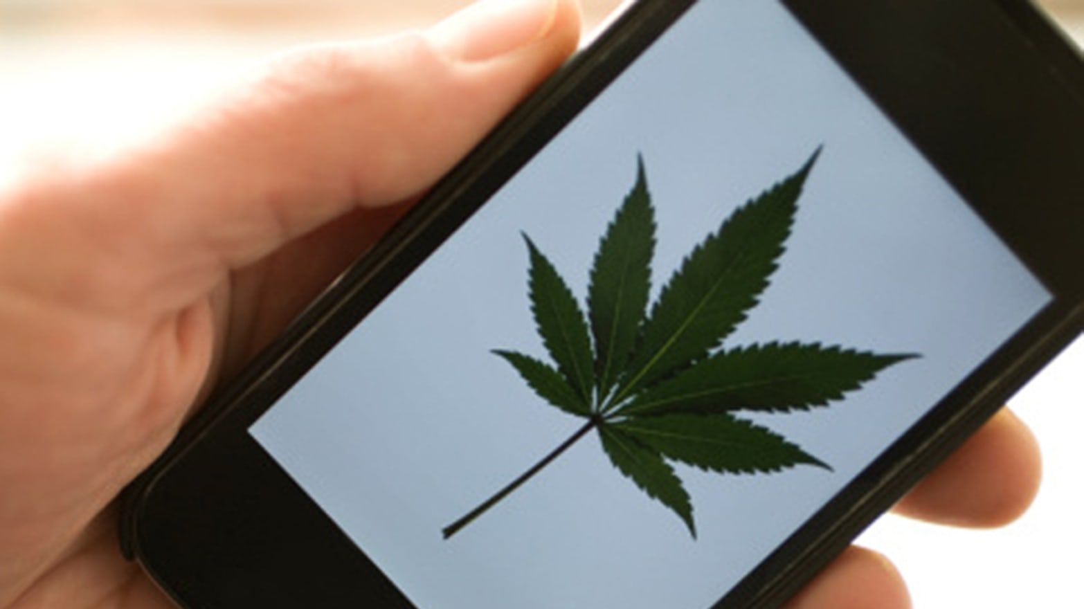 Silk Road Is the eBay of the Online Drug Trade
