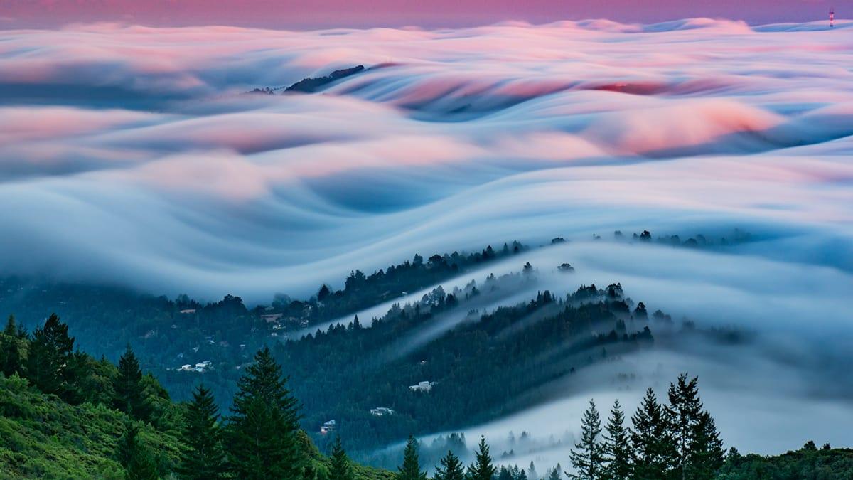A San Francisco Fogaholic's Stunning Photos
