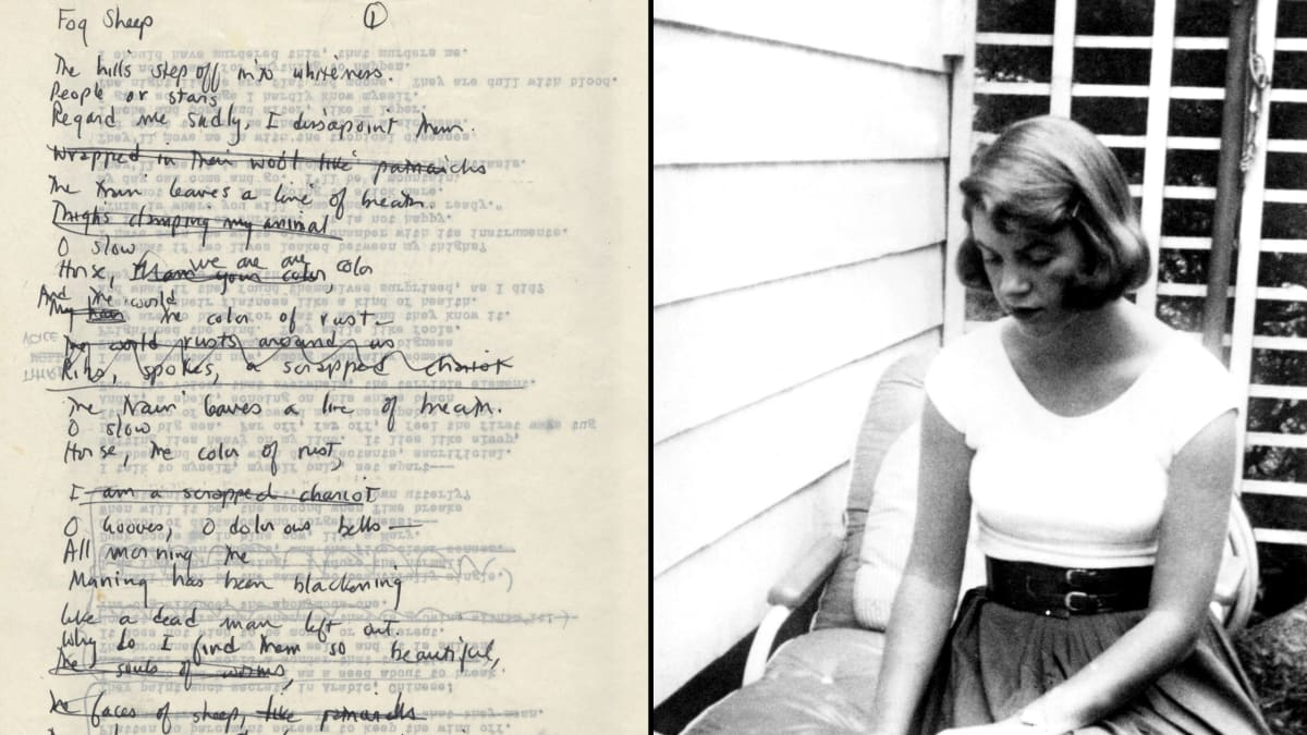 sylvia plath and emily dickensons bibliographies essay Emily dickinson sylvia plath and crisis in poetry essays and term papers available at echeatcom, the largest free essay community.