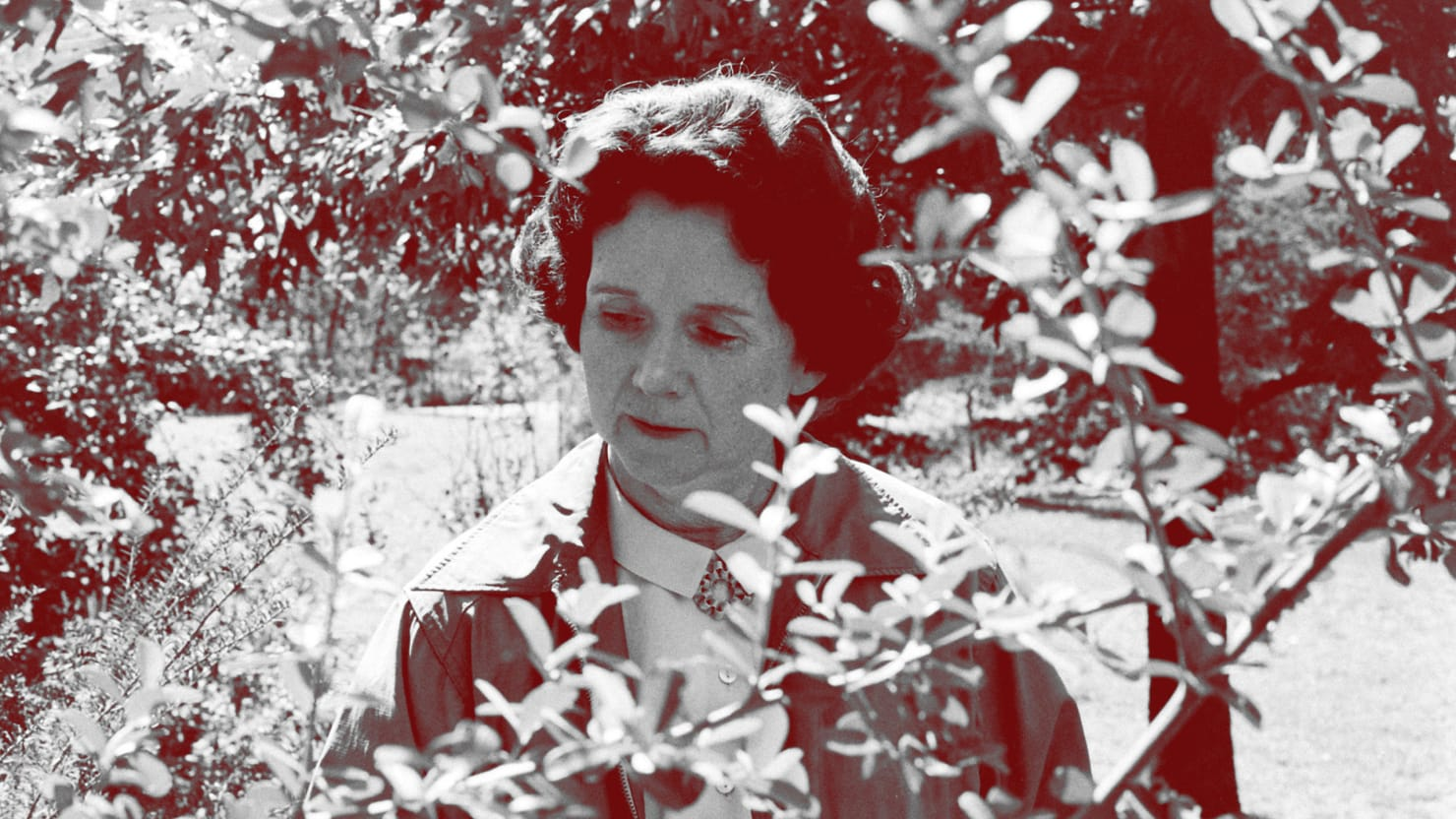 How Rachel Carson Cost Millions of People Their Lives