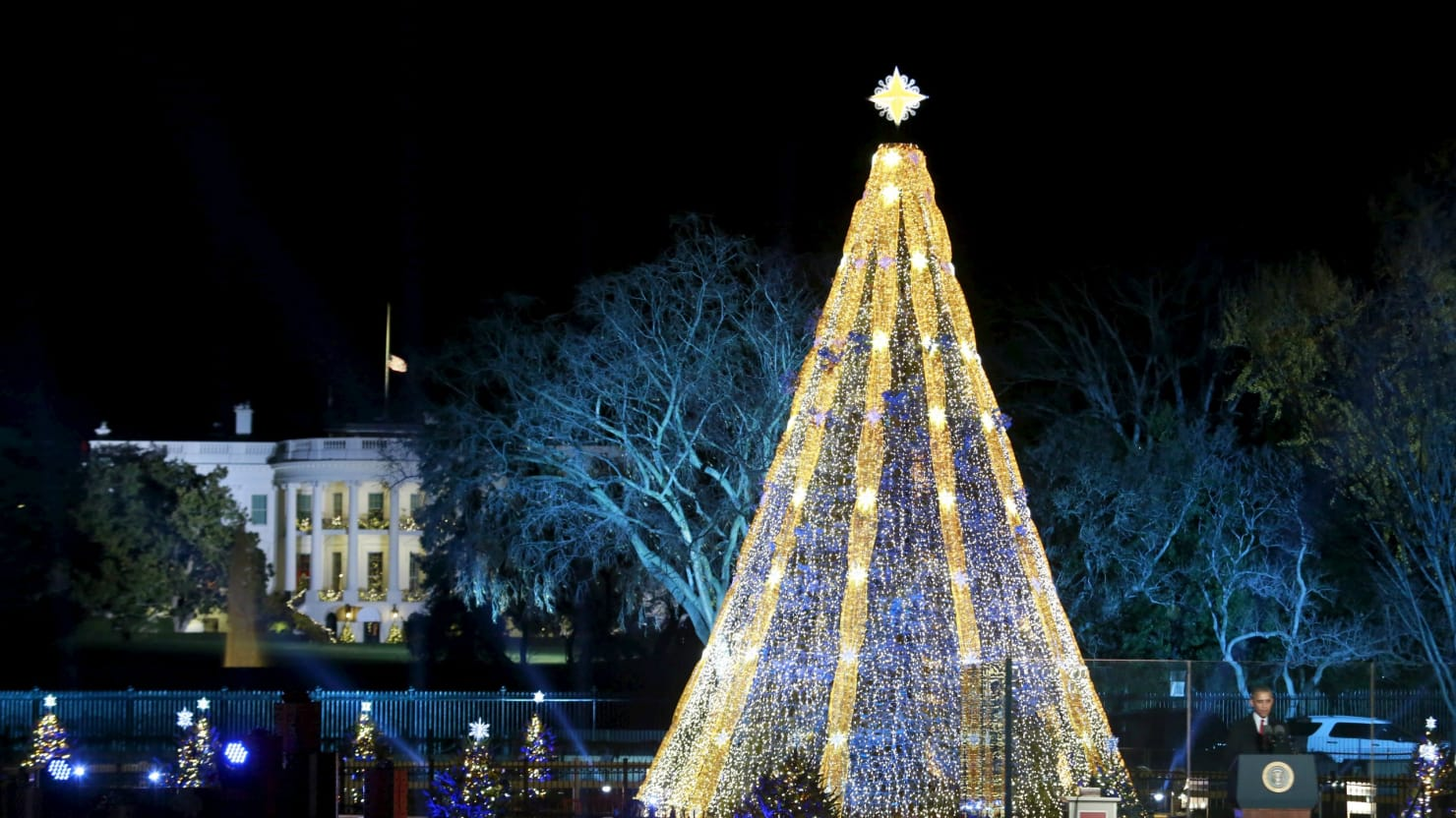 watch the 2016 national christmas tree lighting live stream online - Christmas Light Tree