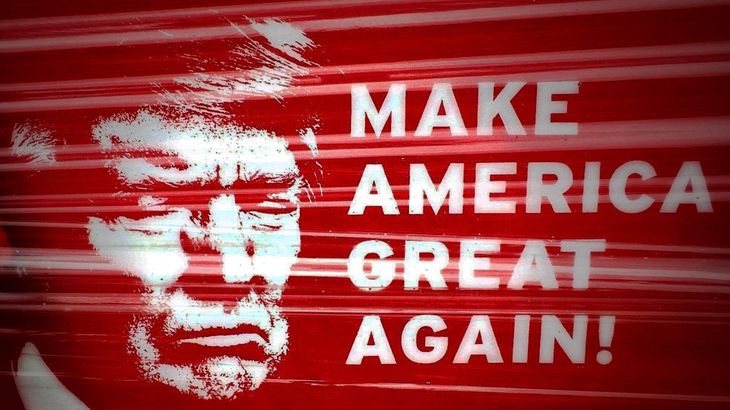 American Idiots 2013 beware the hillary clinton-loathing, donald trump-loving