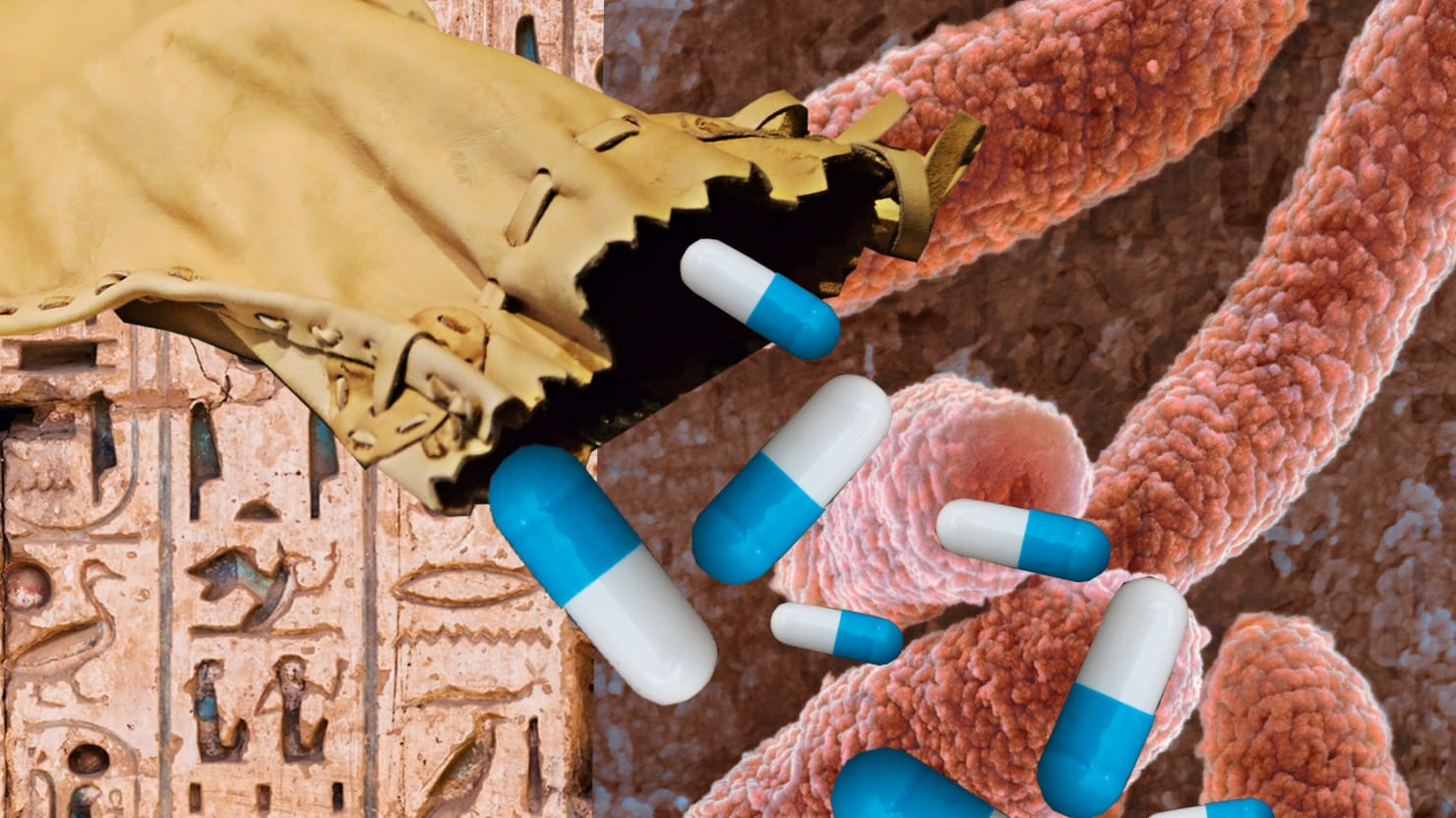 Can the Ancient World Save Us from the Antibiotic-Resistant Suberbug Apocalypse?
