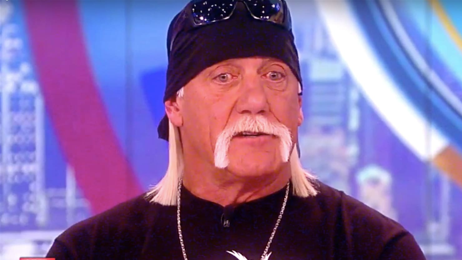 The View Hulk Hogan