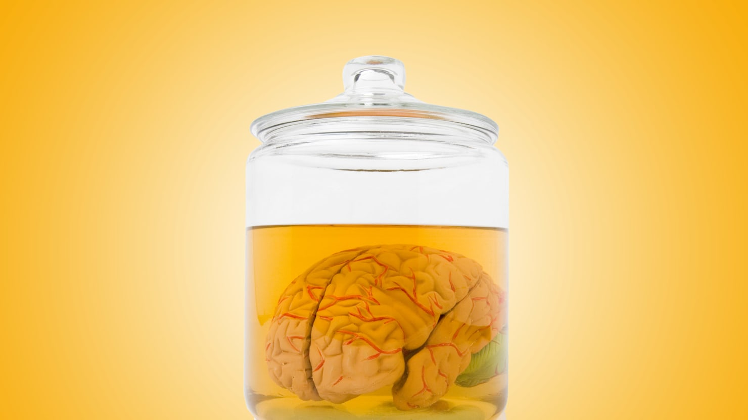 Brains In a Jar Are Real Now