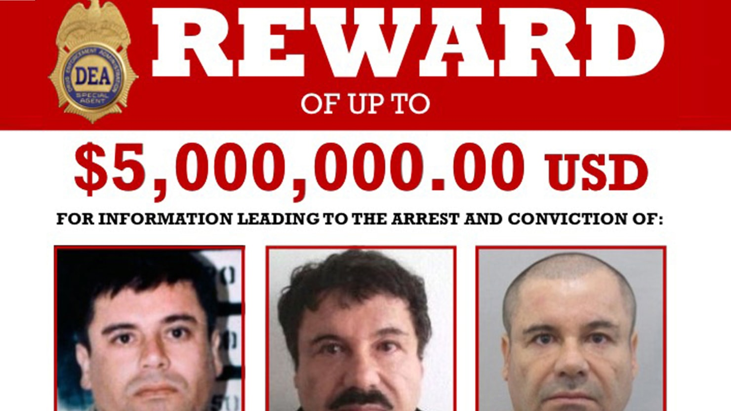 don winslow  author of  u2018the cartel  u2019 levels about el chapo