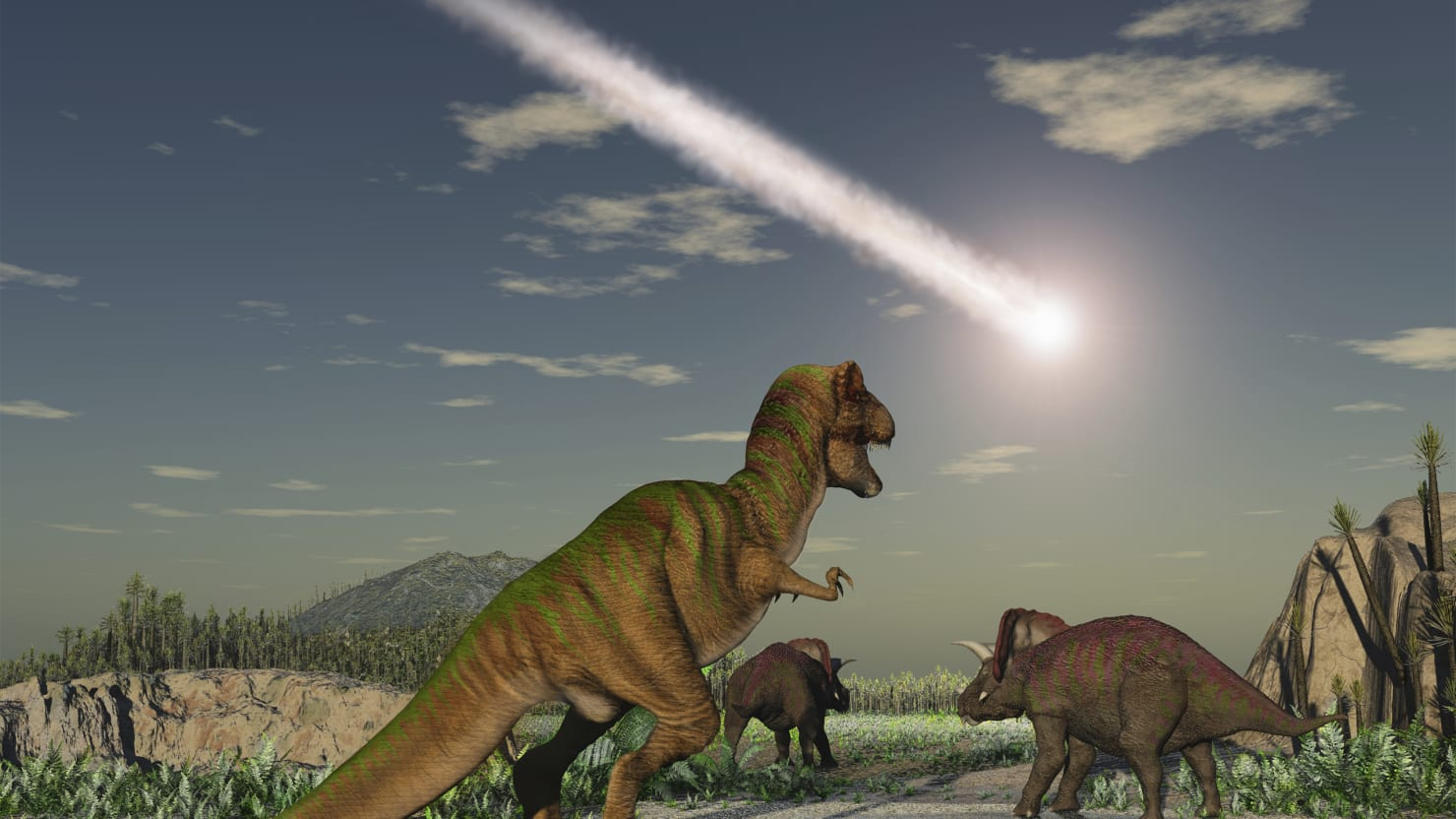 The Sixth Mass Extinction: We Aren't The Dinosaurs, We're The Asteroid