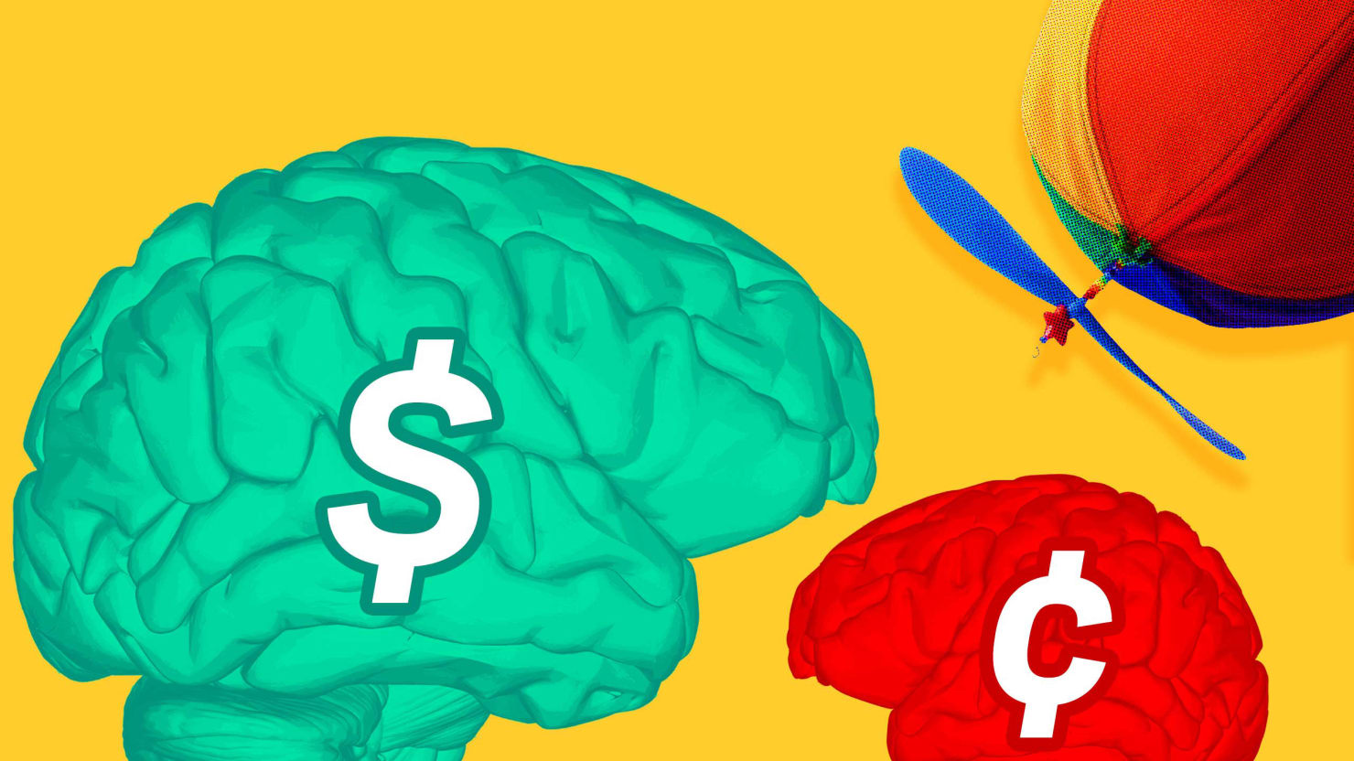 Money Can Buy You a Bigger Brain