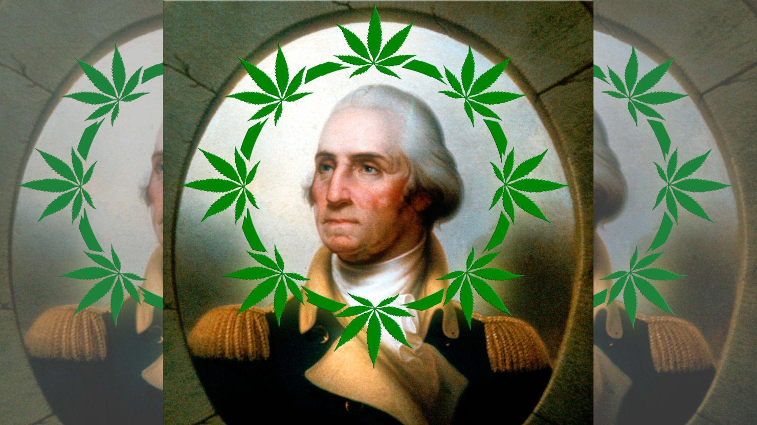 Джордж вашингтон сад марихуана купить семена конопли сорта