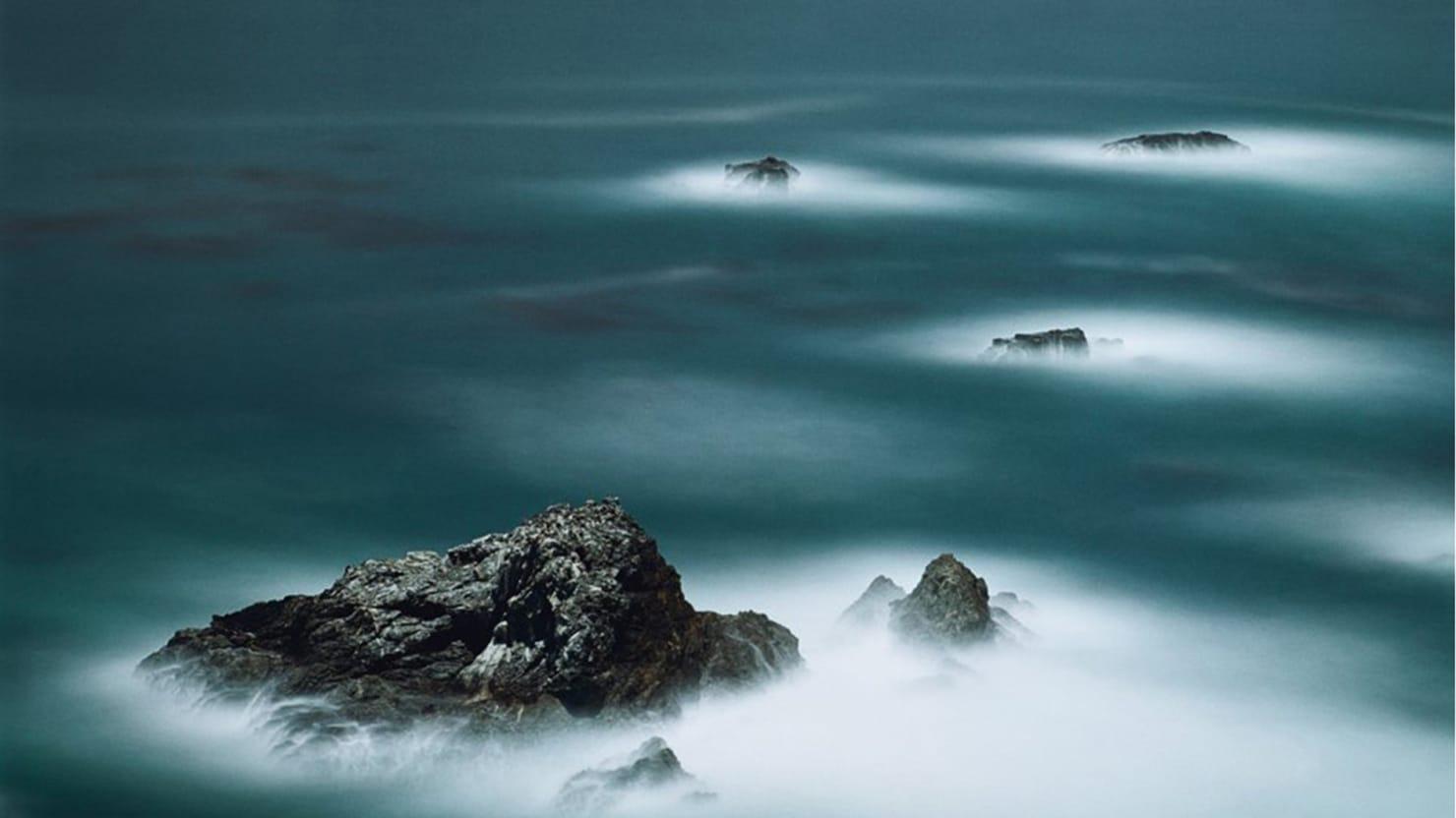 Full Moon: Darren Almond's Nocturnal Nature Series