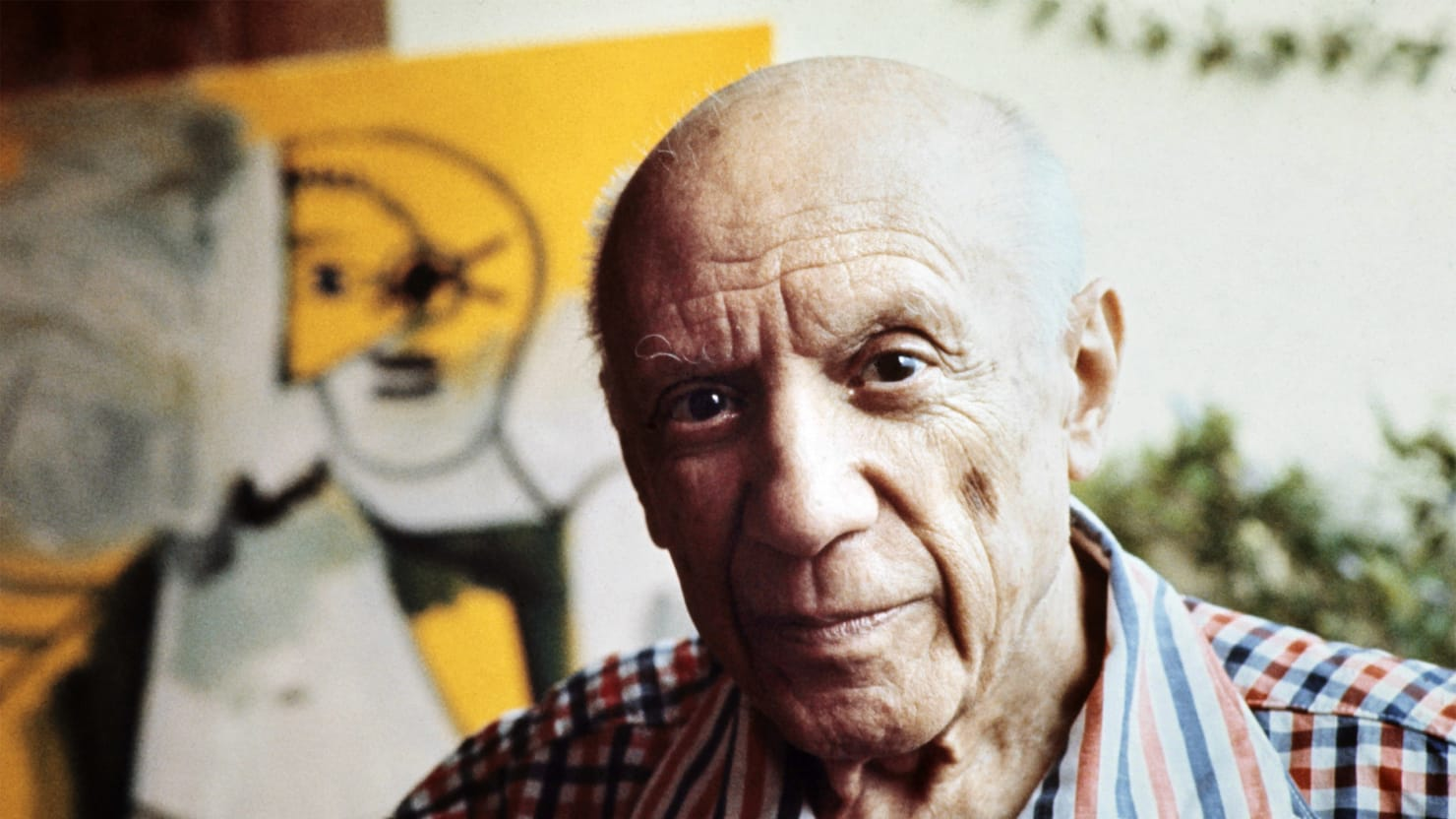 Revealing The Unseen Picasso