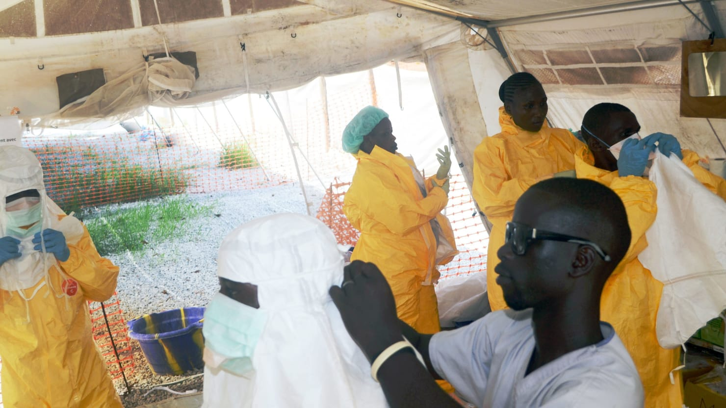 a research on the ebola epidemic in west africa Special report from the new england journal of medicine — after ebola in west africa — unpredictable ebola virus disease outbreak: research and.