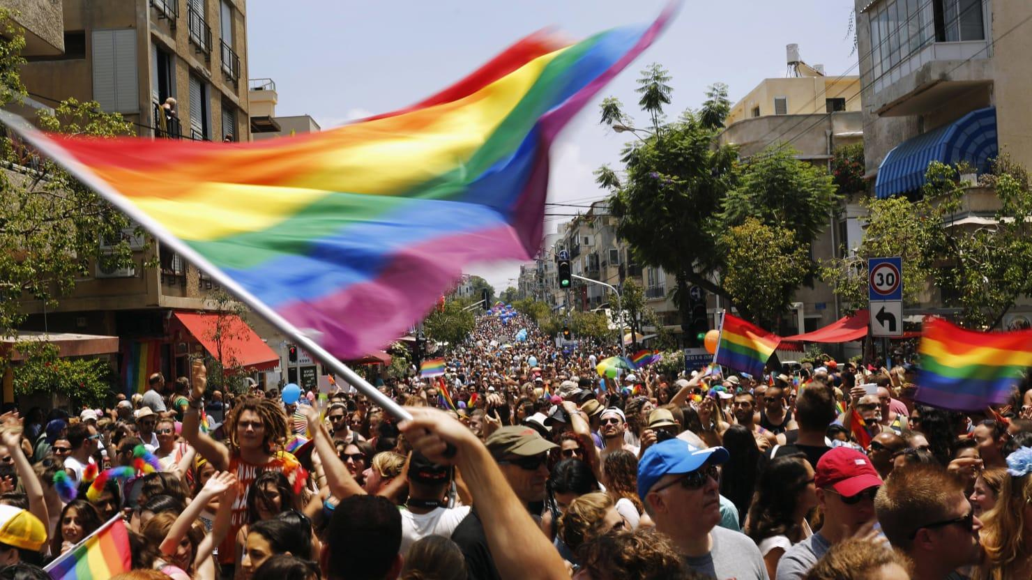 Gay plattform