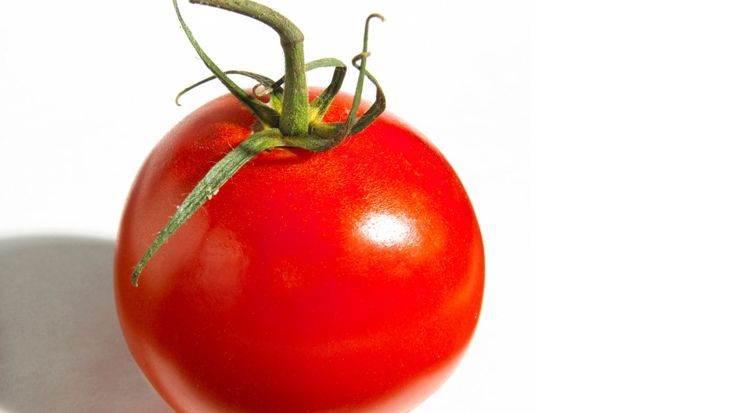 A Tomato a Day Keeps the Doctor Away