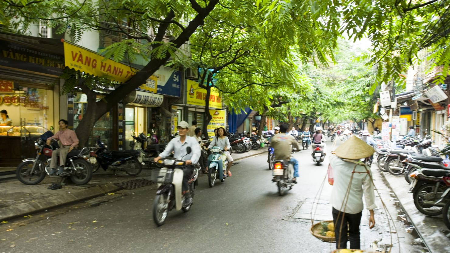 Going Back to Vietnam Is Sometimes Amusing, Often Fraught, and Always Surreal