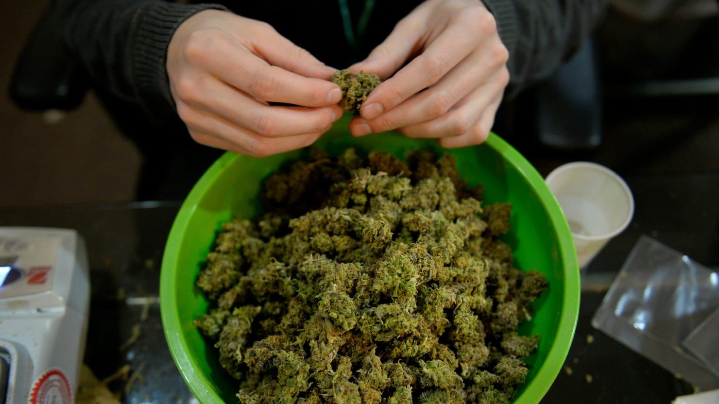 Марихуана как сделать химку гуф о марихуане