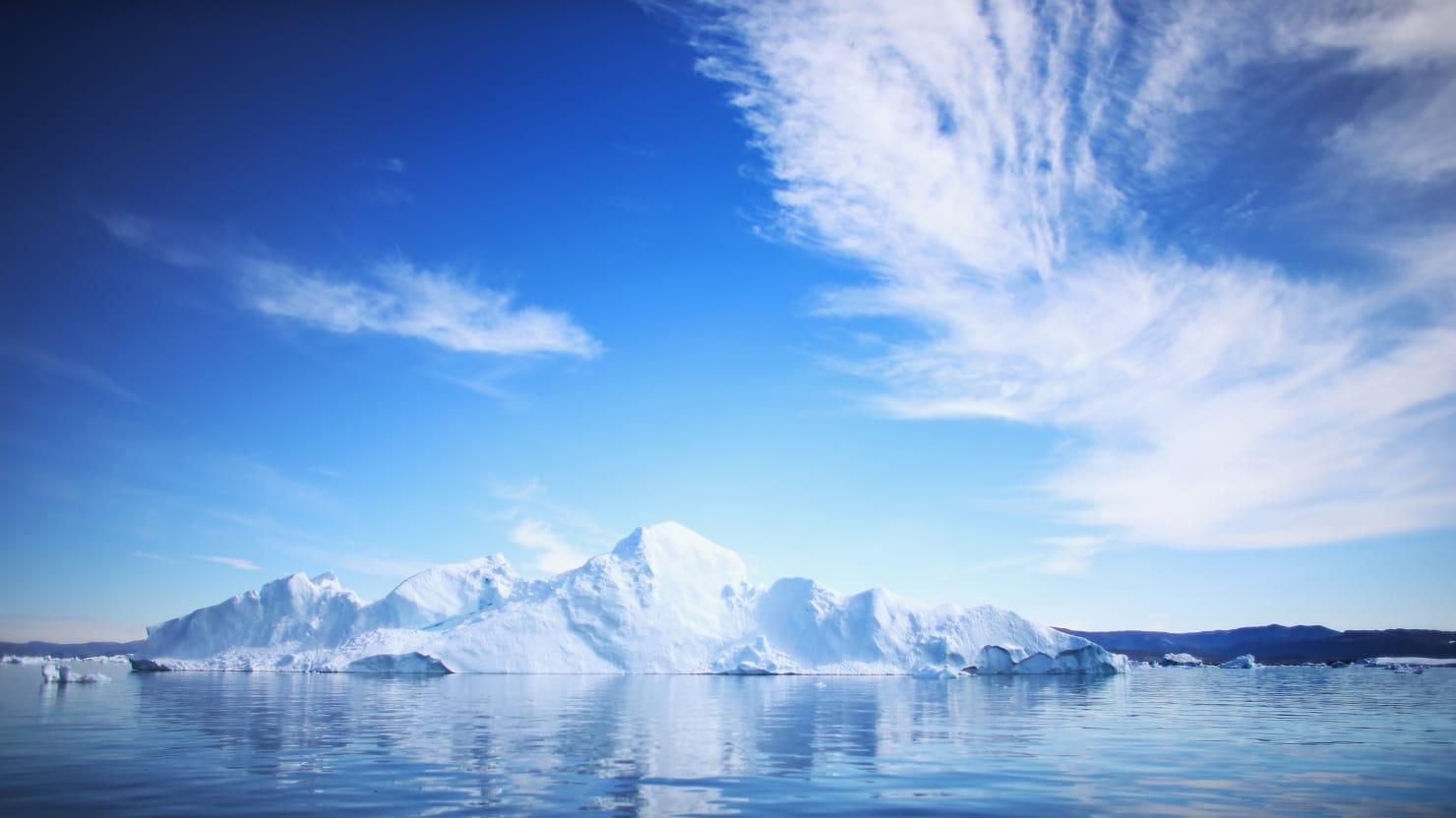 Ice Algae: The Engine Of Life In The Central Arctic Ocean | Ocean ...