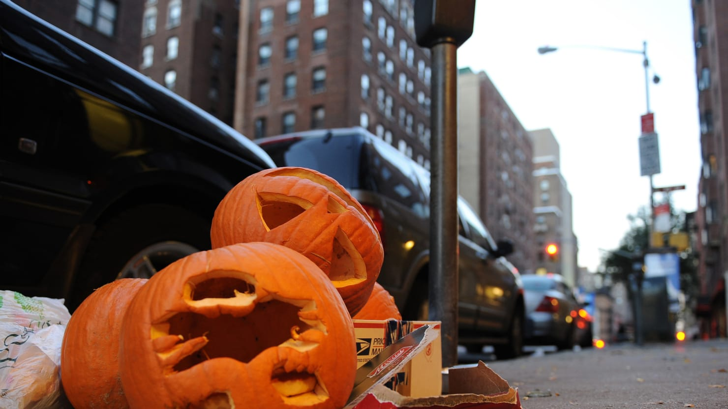 eat your halloween pumpkin and save the planet!