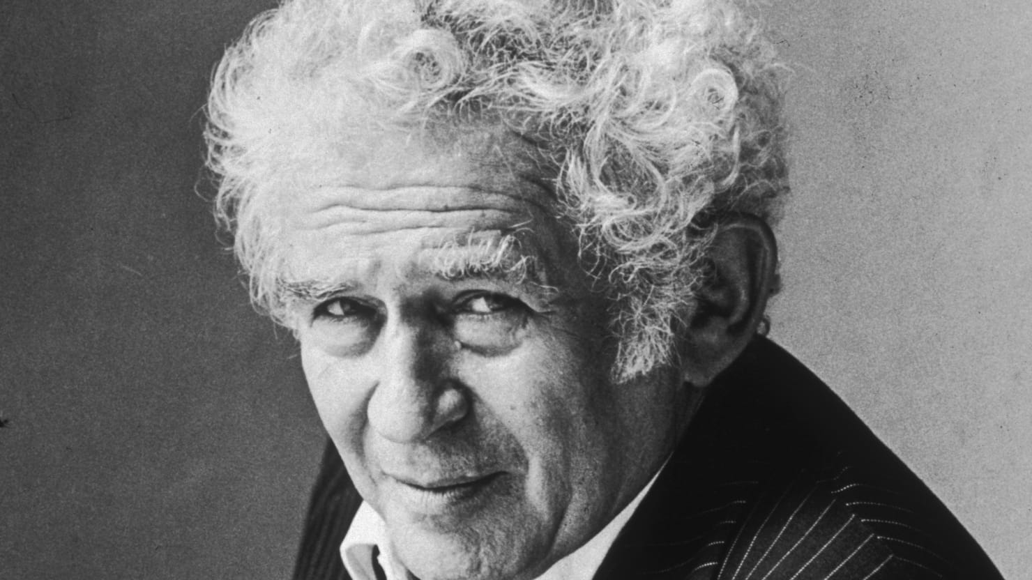 Image result for norman mailer