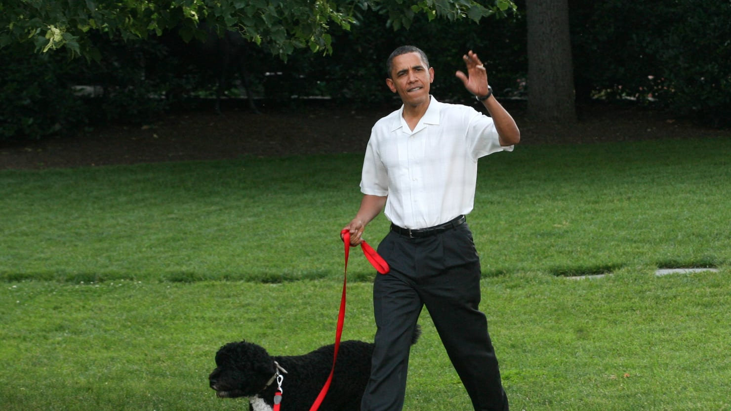 Fringe Factor: Obama Hates White People—and White Dogs