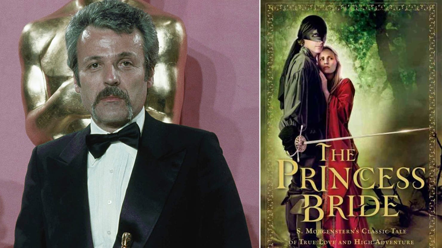 an analysis of the changes in the development of the princess bride screenplay by william goldman Which lie did i tell is goldman brings together some of today's top screenwriters to analyse and doctor a screenplay he the princess bride william goldman.