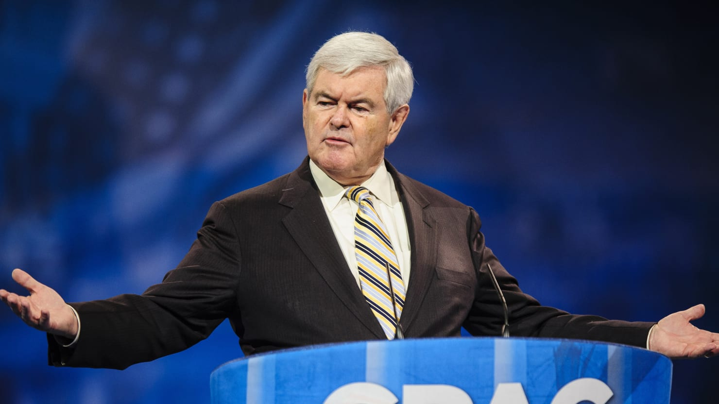 Newt Gingrich: Republicans Can't Win Just By Beating Up Hillary Clinton