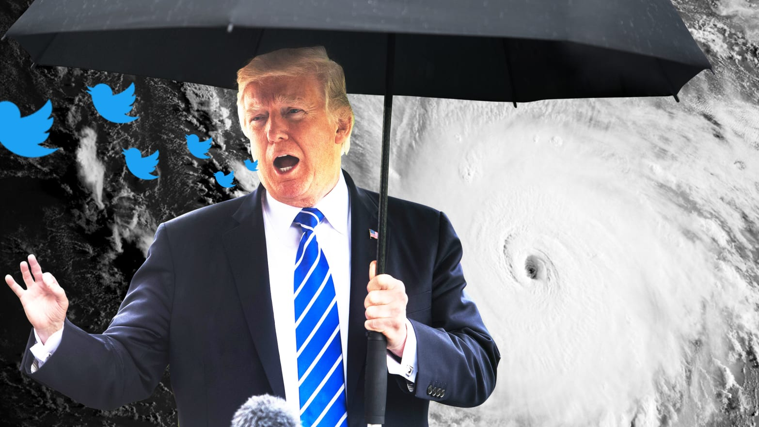 Trump tweets about Hurricanes Harvey and Irma like we're in a TV show.