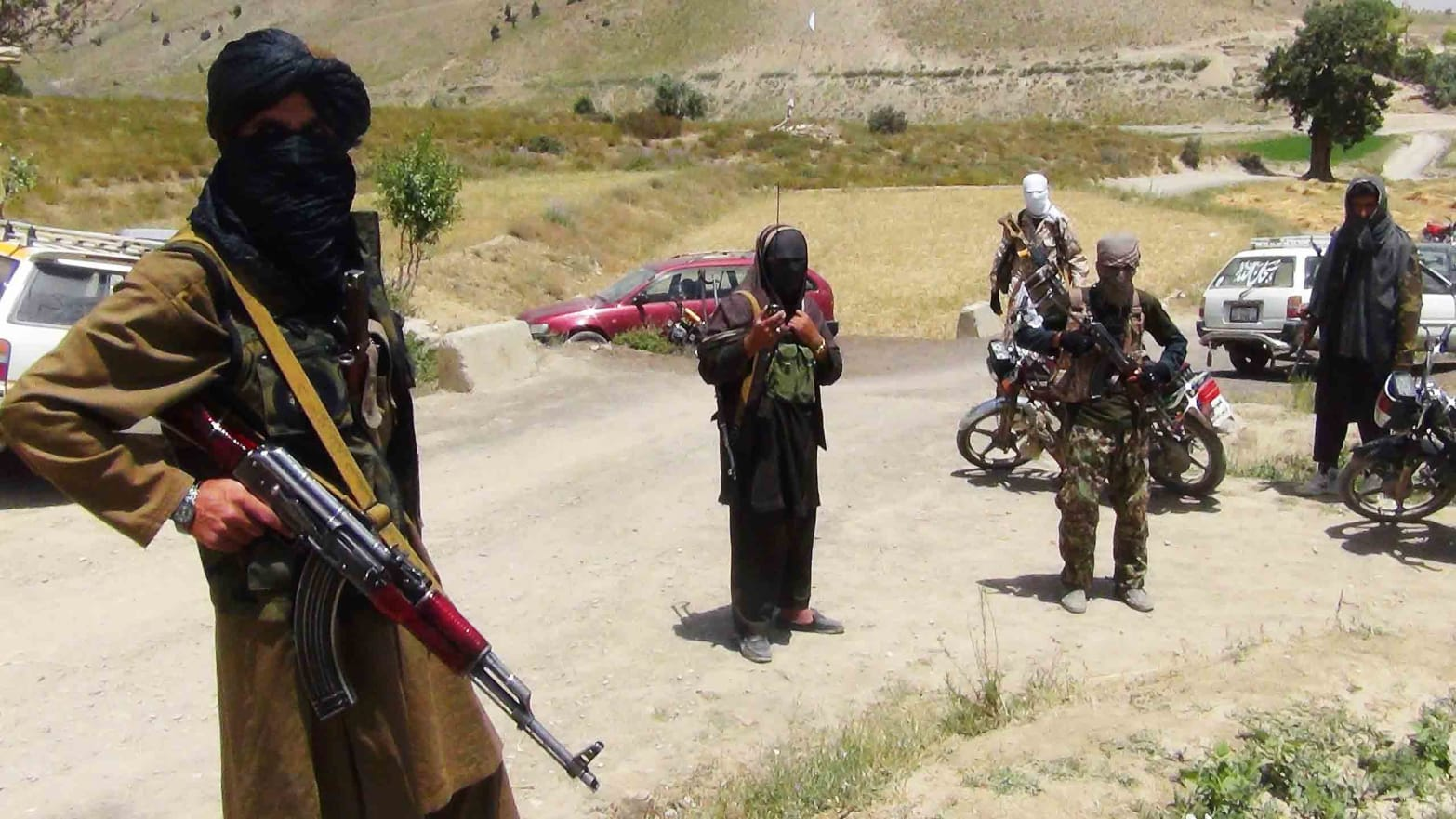 "Картинки по запросу ""taliban"""