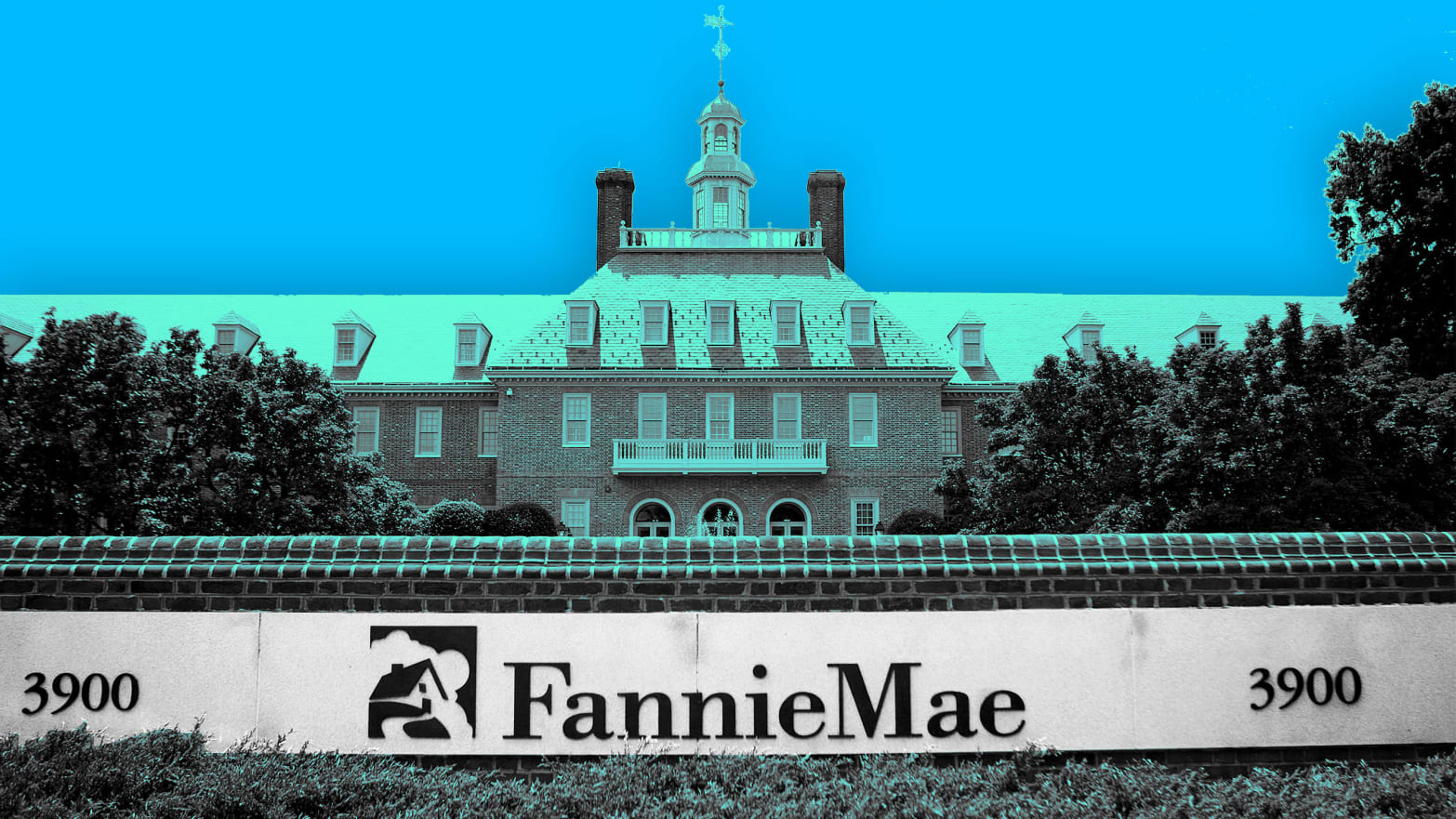 Fannie Fire
