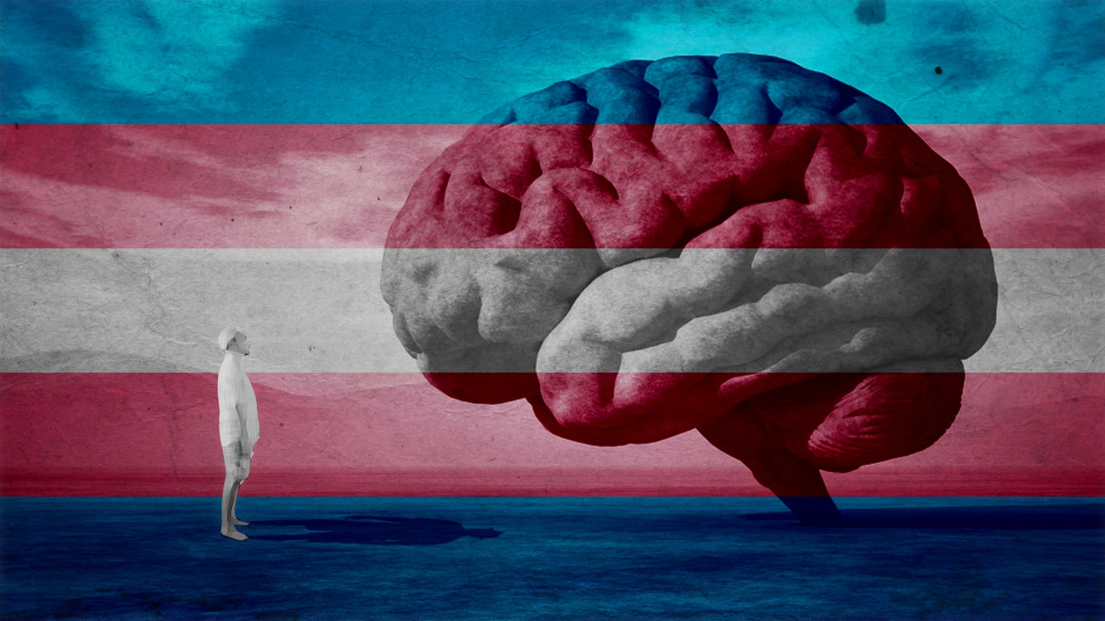 The Search for the 'Transgender Brain' Is Dangerous—and Dehumanizing