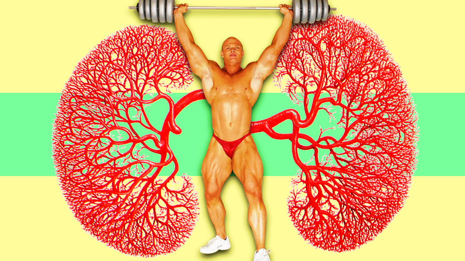 body builder in red underwear and white sneakers in front of kidney image nephrons rhabdo elite ultramarathon