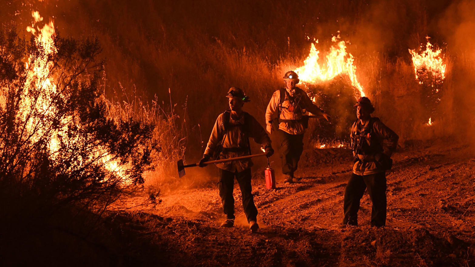 Reducing Wildfire Risks for Better Management and Resource Allocation