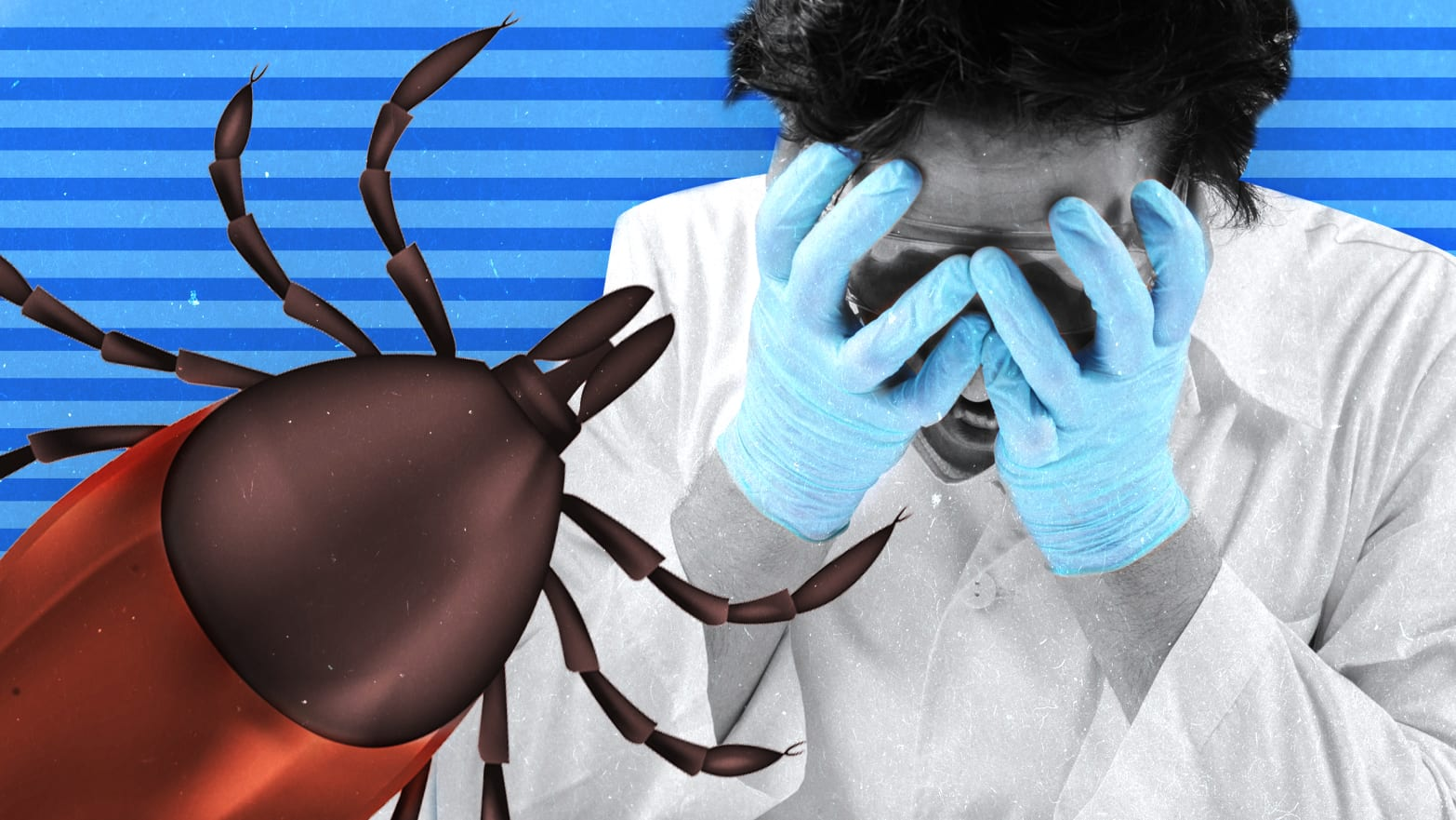 giant tick crawling overdoctor whose hands are in on his face in distress shock fear asian longhorned east tick lyme disease