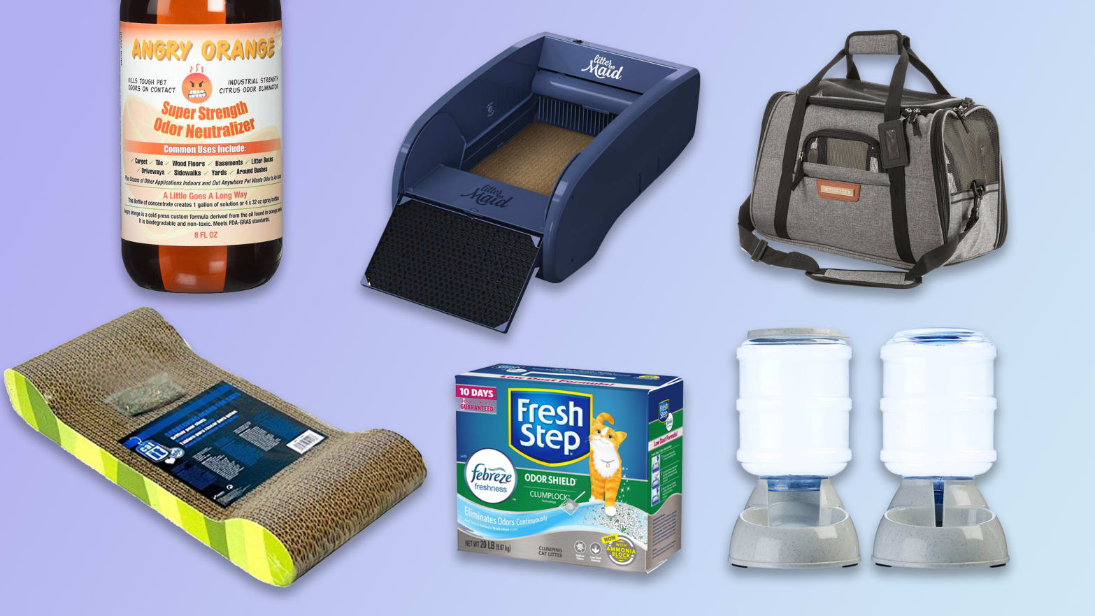 Cat Essentials Like Litter Boxes, Feeding Bowls, Carrying Cases, And More