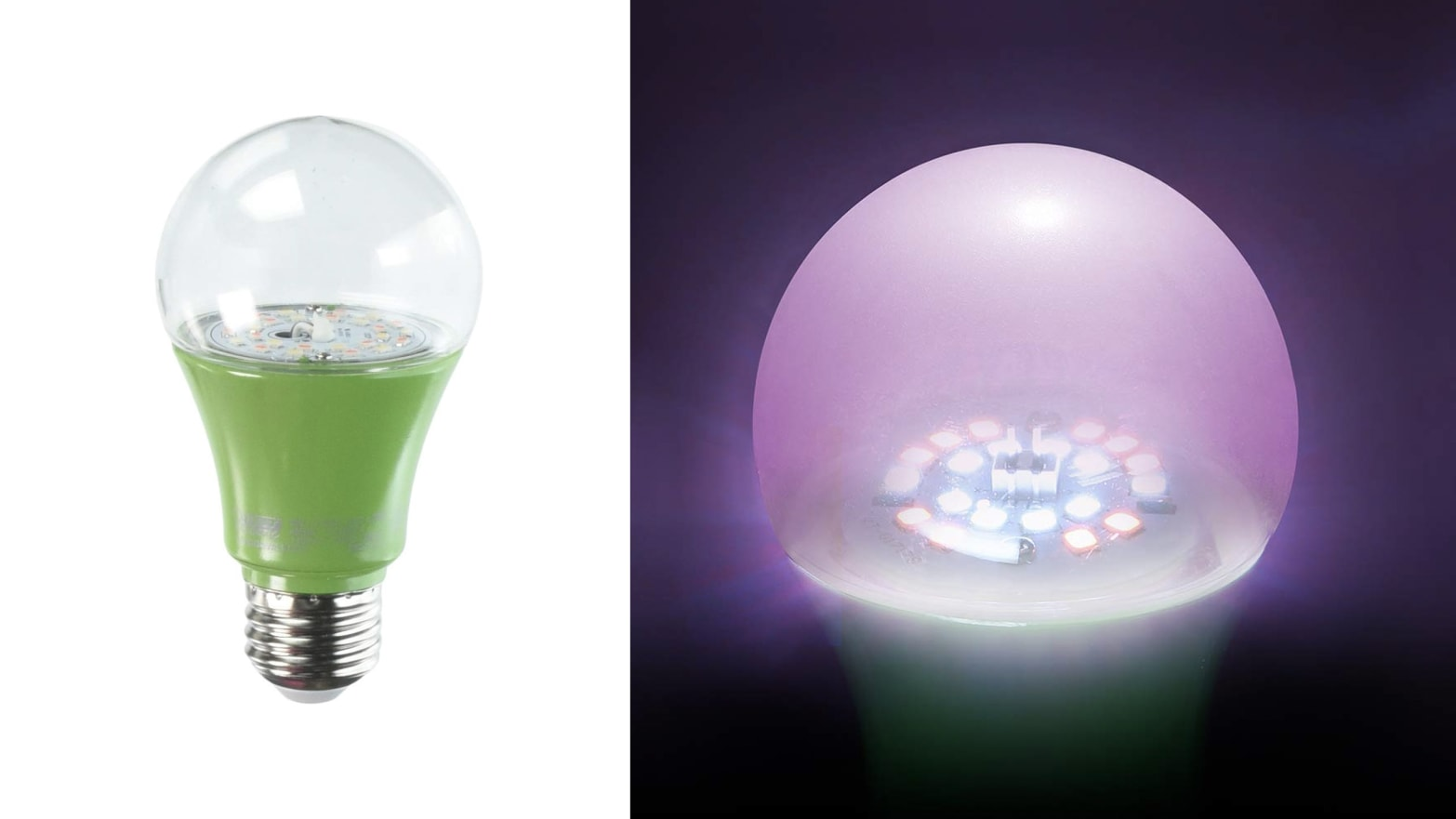 Save Your Indoor Plants From Dying In Winter With An Led Grow Bulb