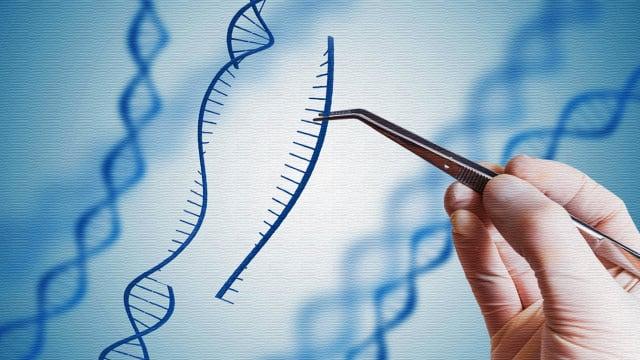 laboratory glove hand holding with tweezer genetic material nanospear dna engineering precision medicine